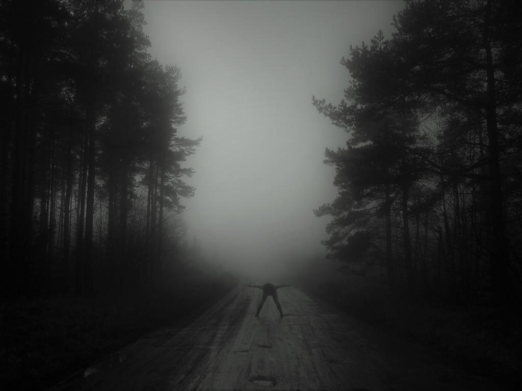 misty woodland landscape photograph creepy image woman artist fine art