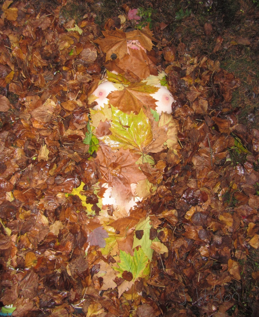 photograph feminist art woman in the woods with Autumn Fall leaves