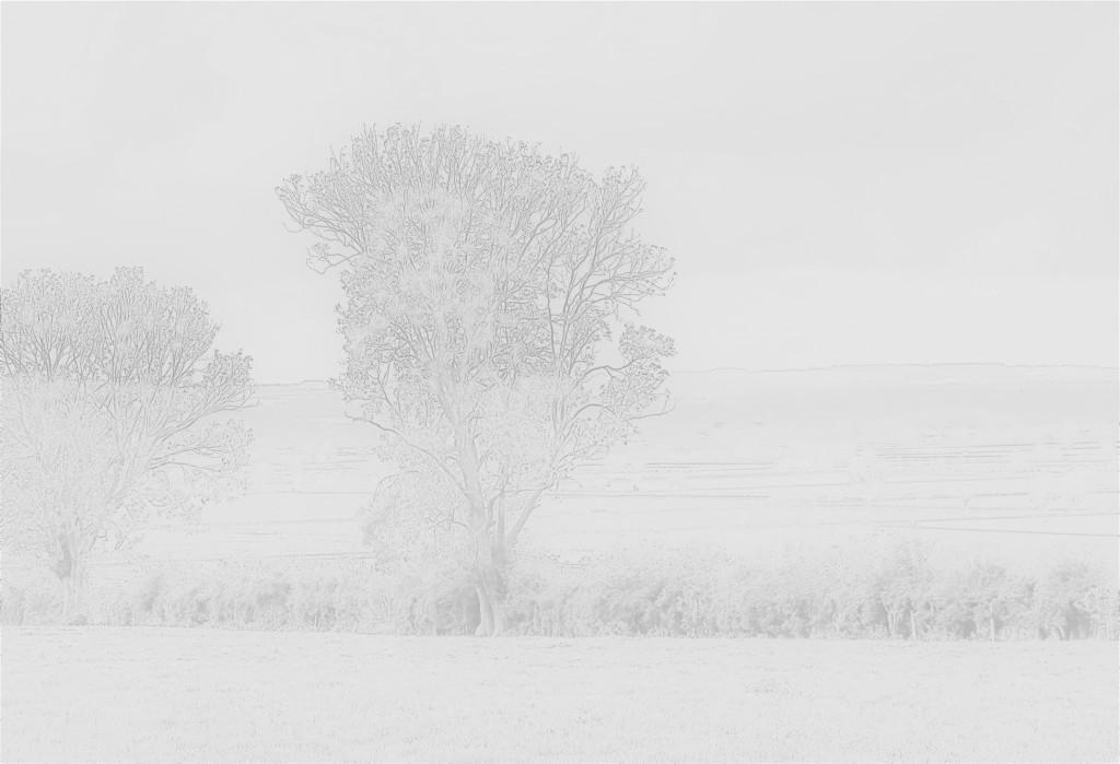 photograph of landscape environmentalism North Yorkshire glacial valley floodplain art activism
